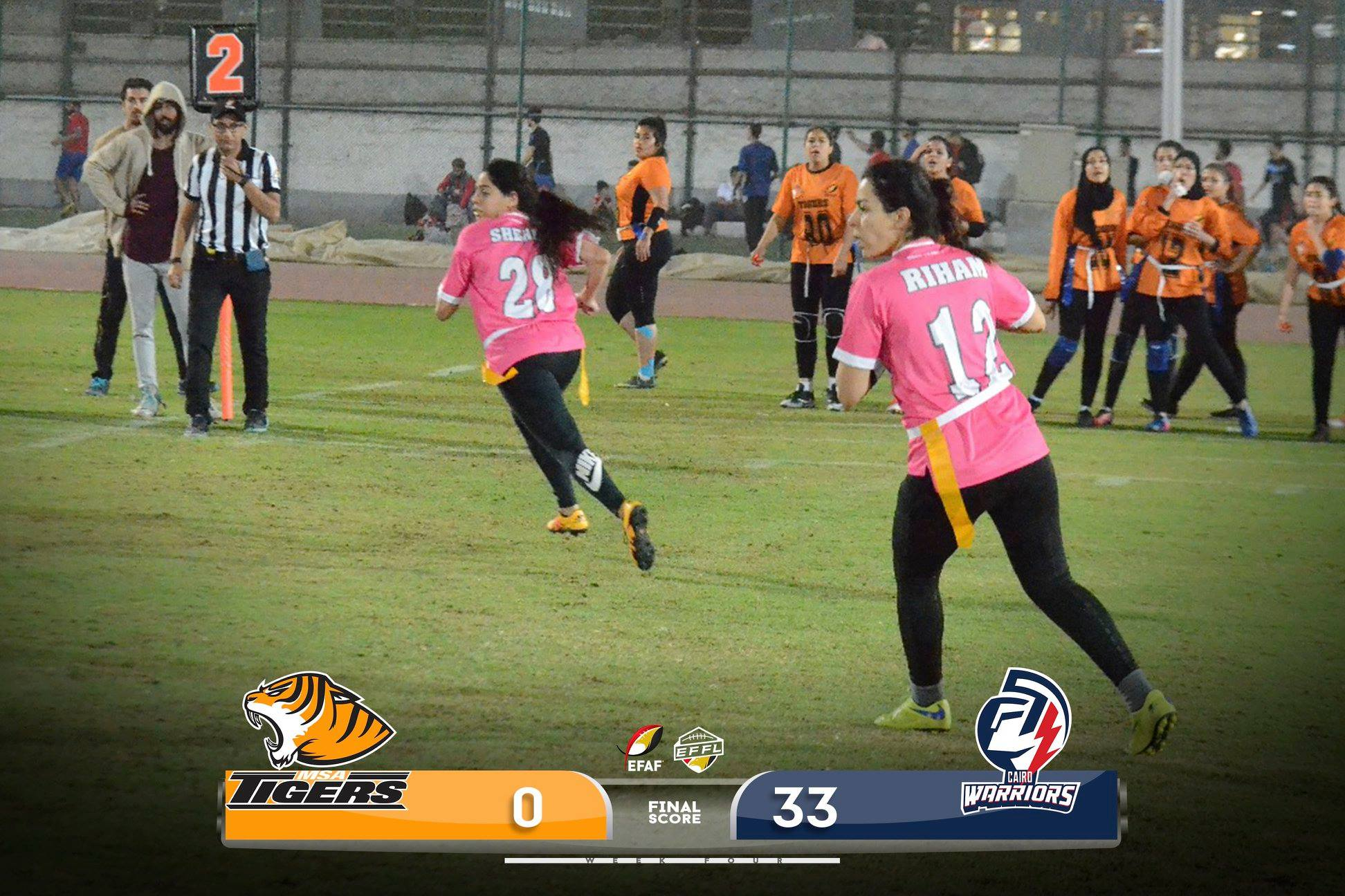 tigers vs warriors - photo #18